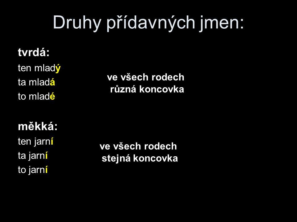 Druhy přídavných jmen: