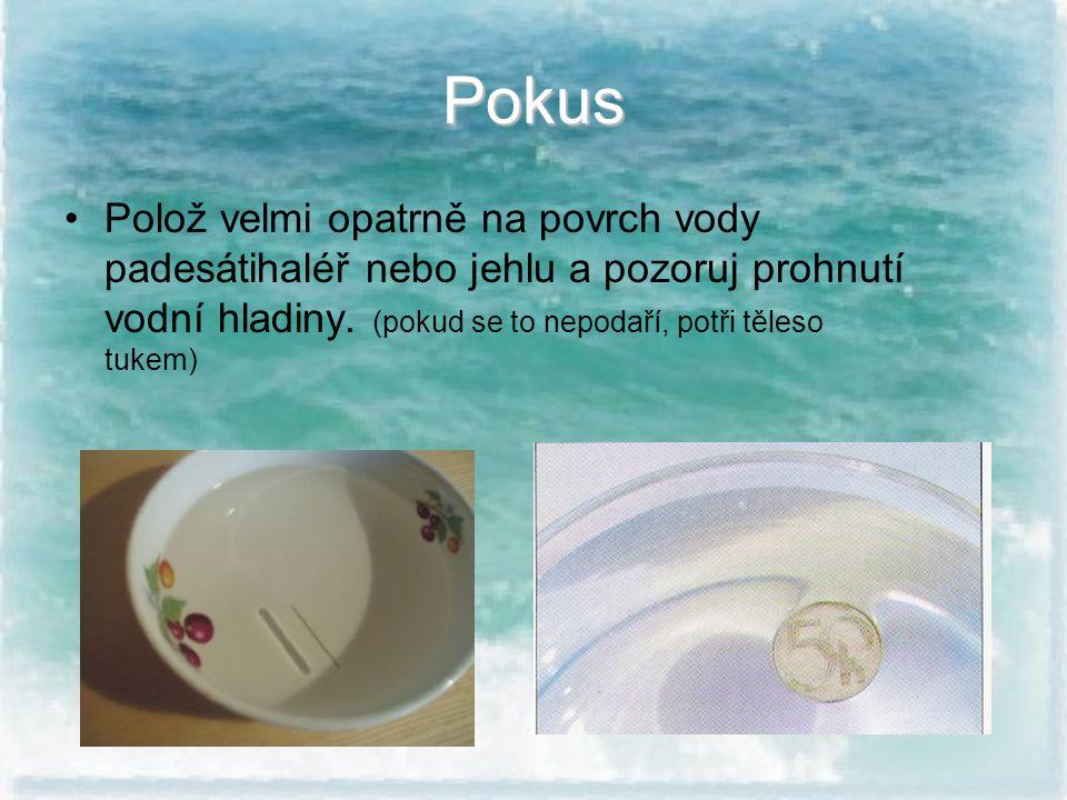 Pokus Polož velmi opatrně na povrch vody padesátihaléř nebo jehlu a pozoruj prohnutí vodní hladiny.