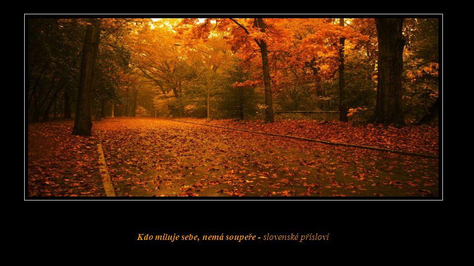 Kdo miluje sebe, nemá soupeře - slovenské přísloví