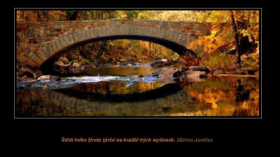 Štěstí tvého života závisí na kvalitě tvých myšlenek. Marcus Aurelius.