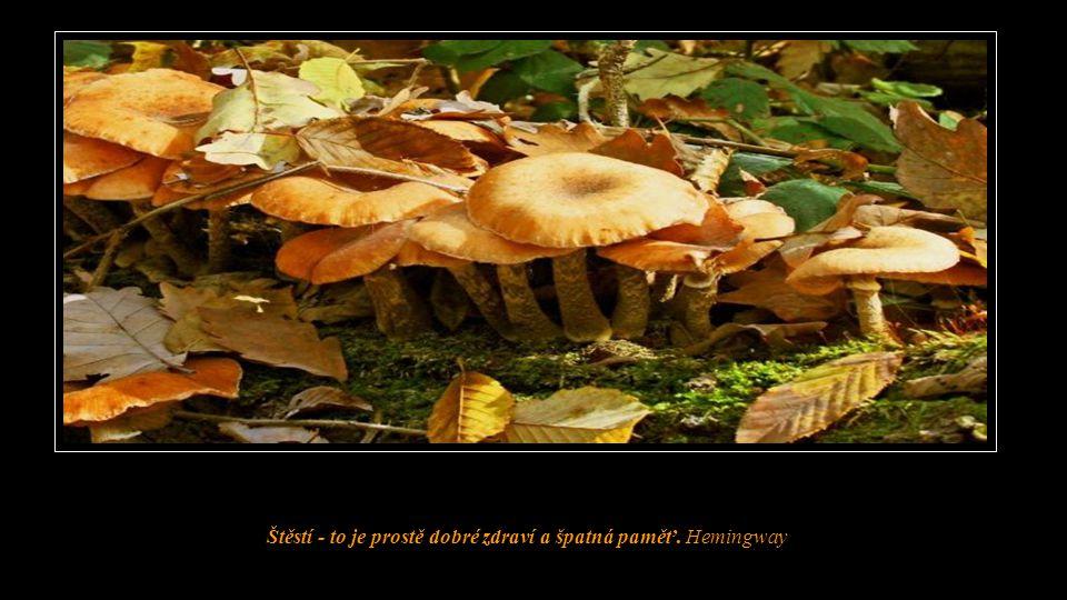 Štěstí - to je prostě dobré zdraví a špatná paměť. Hemingway
