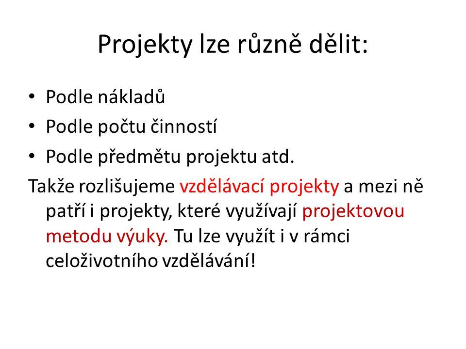 Projekty lze různě dělit: