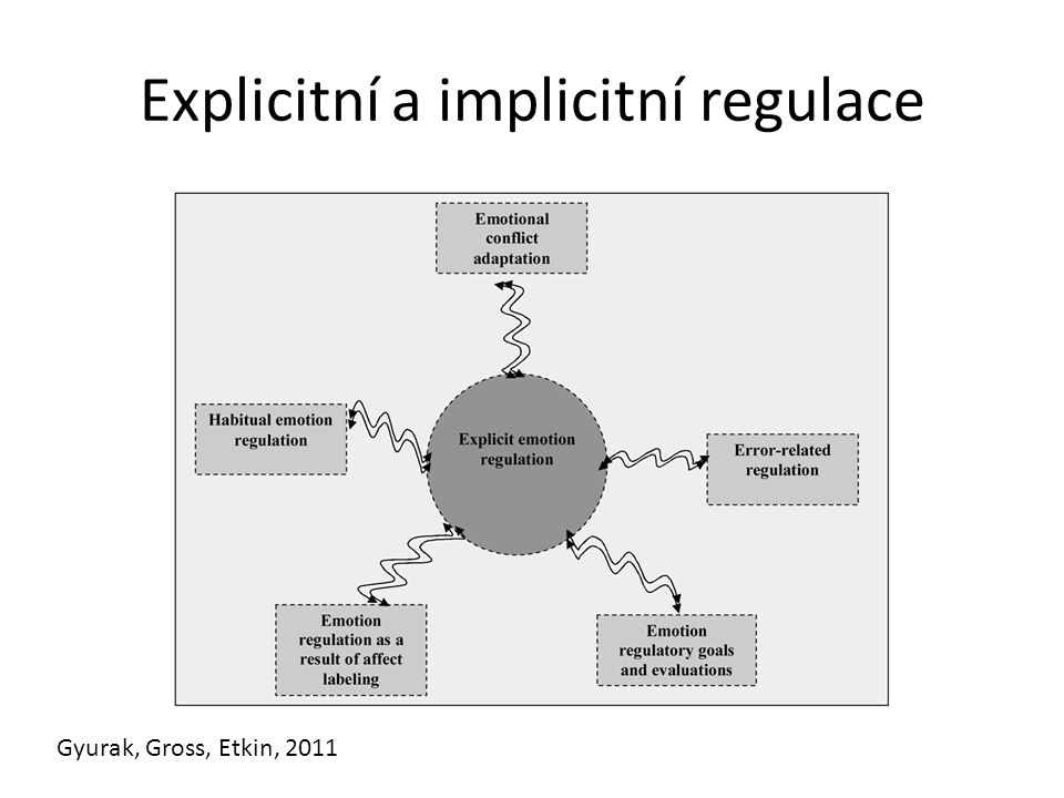 Explicitní a implicitní regulace