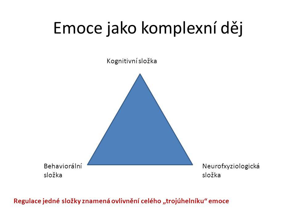 Emoce jako komplexní děj