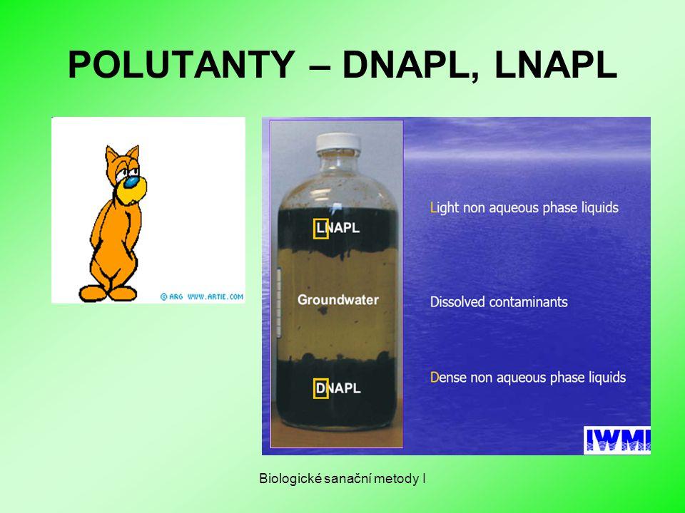 POLUTANTY – DNAPL, LNAPL