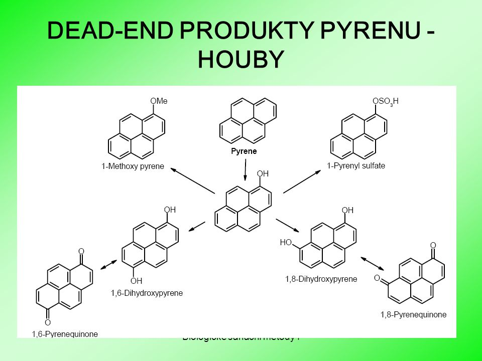 DEAD-END PRODUKTY PYRENU - HOUBY