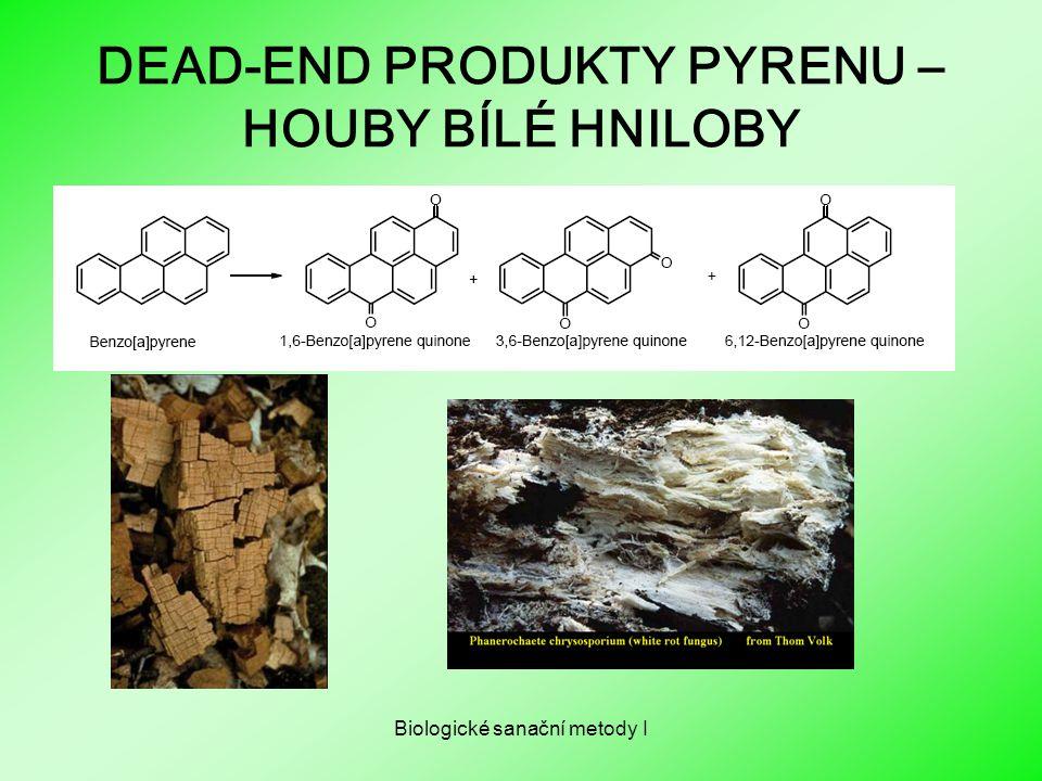 DEAD-END PRODUKTY PYRENU – HOUBY BÍLÉ HNILOBY