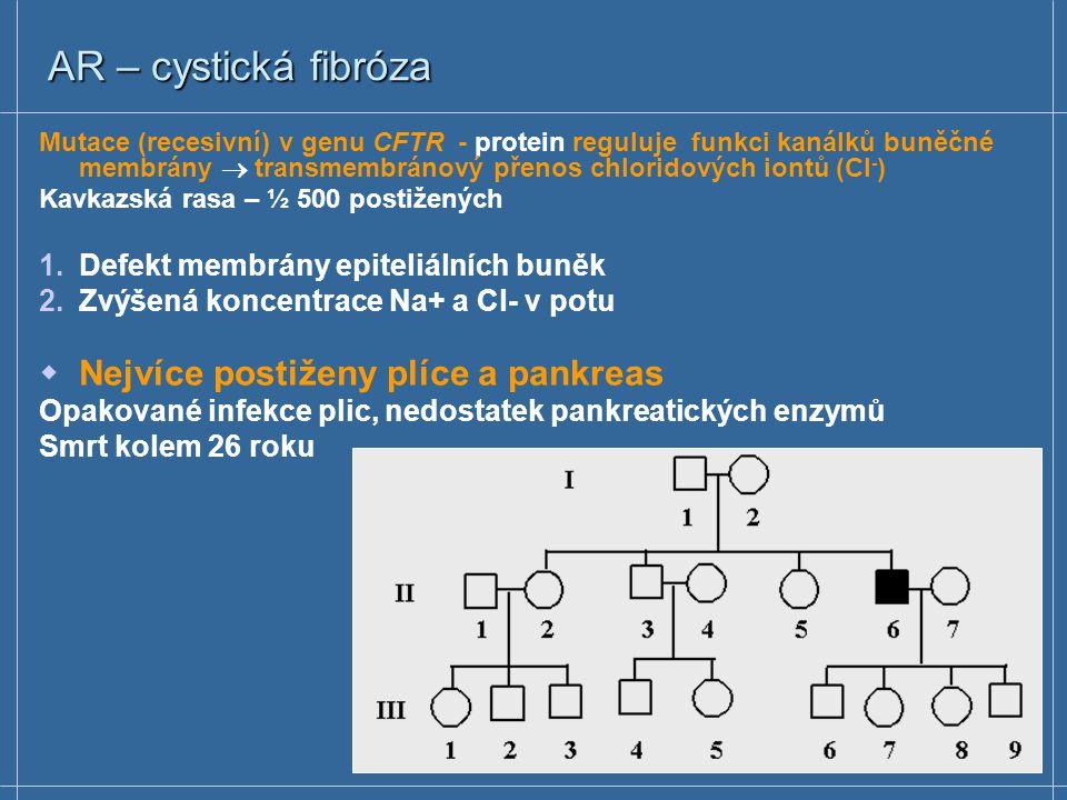 AR – cystická fibróza Nejvíce postiženy plíce a pankreas