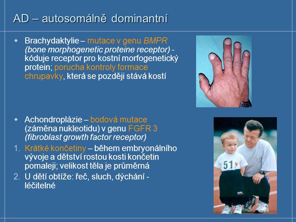 AD – autosomálně dominantní