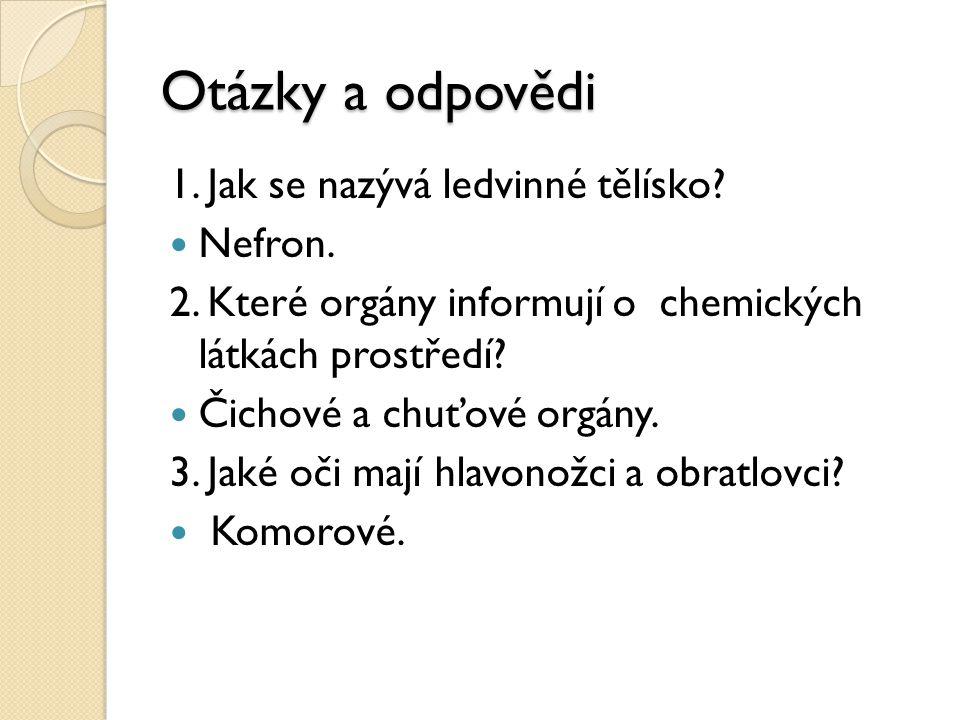 Otázky a odpovědi 1. Jak se nazývá ledvinné tělísko Nefron.
