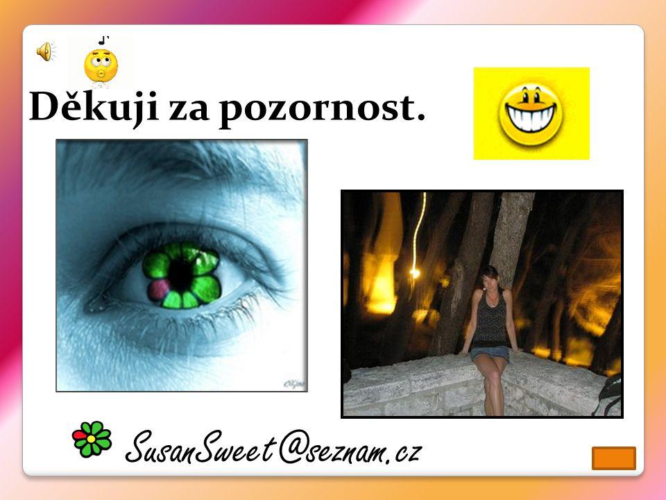Děkuji za pozornost. SusanSweet@seznam.cz