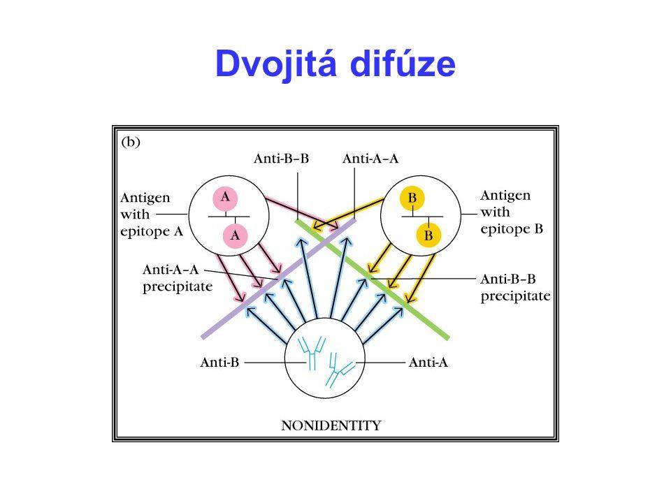 Dvojitá difúze 11