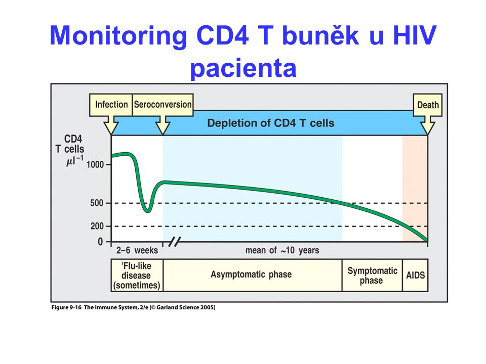 Monitoring CD4 T buněk u HIV pacienta