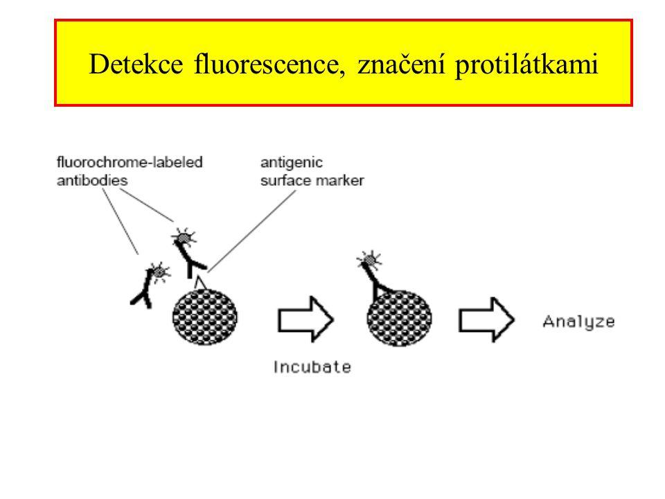 Detekce fluorescence, značení protilátkami
