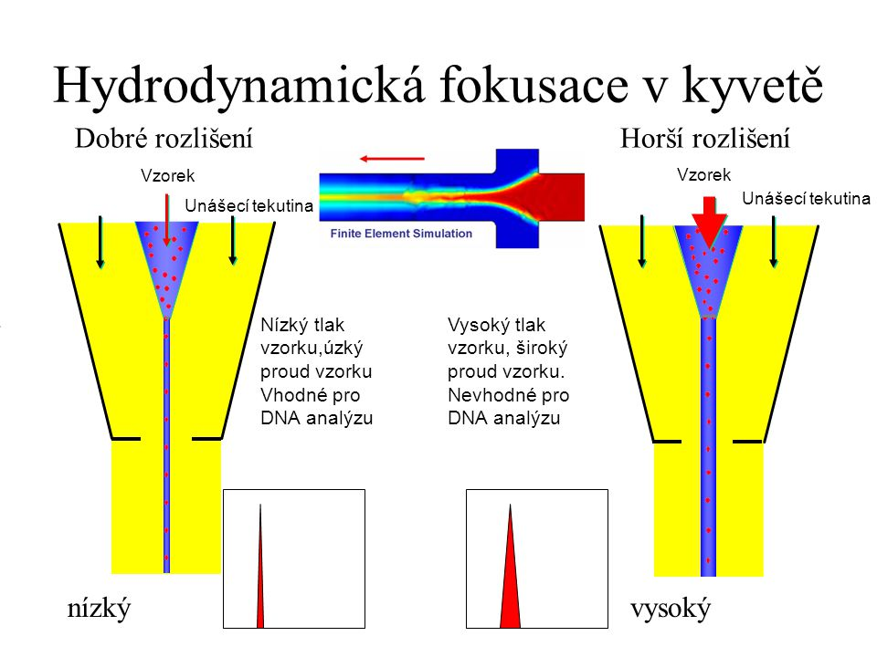 Hydrodynamická fokusace v kyvetě