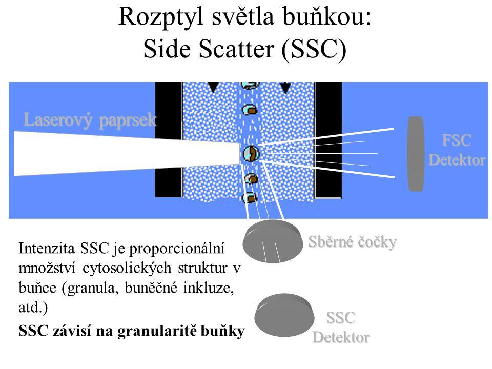 Rozptyl světla buňkou: Side Scatter (SSC)