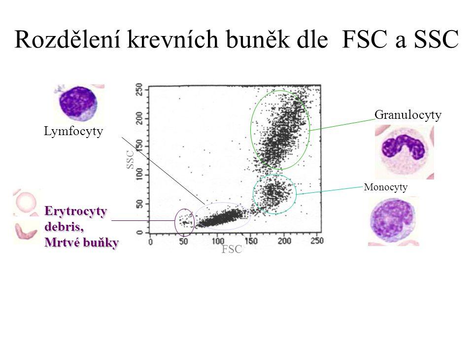 Rozdělení krevních buněk dle FSC a SSC