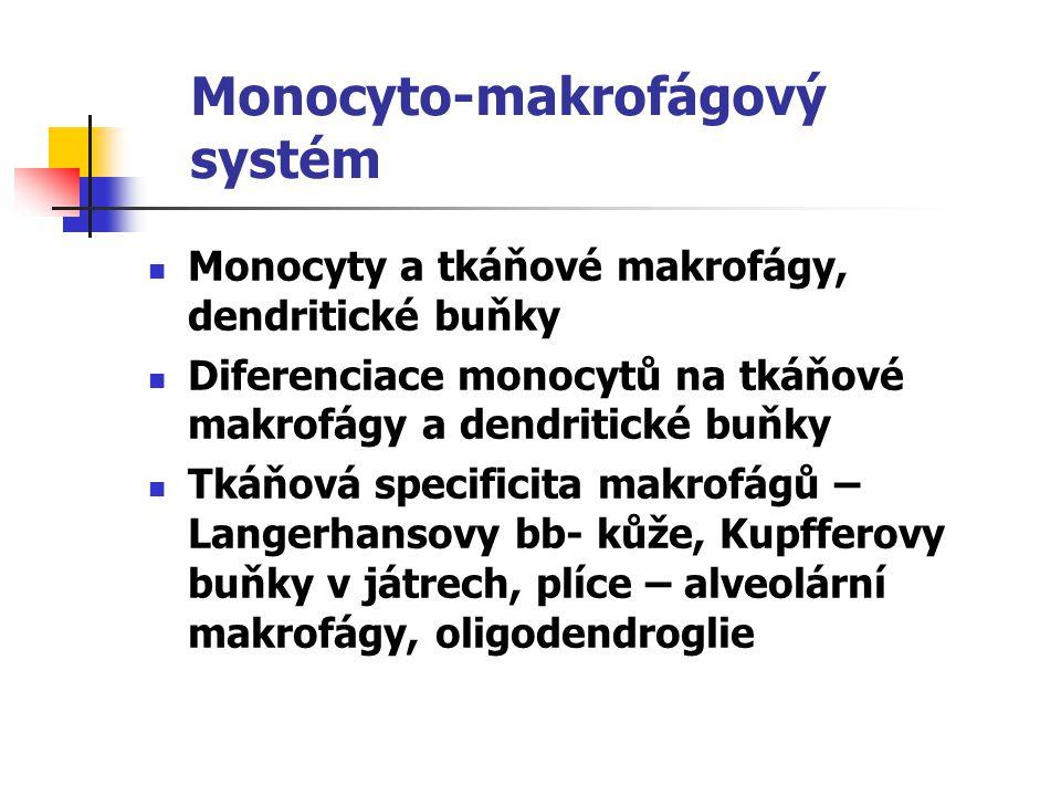 Monocyto-makrofágový systém
