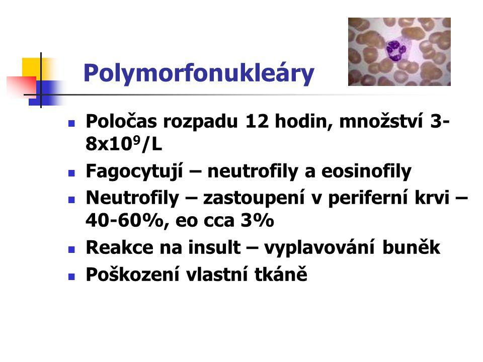 Polymorfonukleáry Poločas rozpadu 12 hodin, množství 3-8x109/L