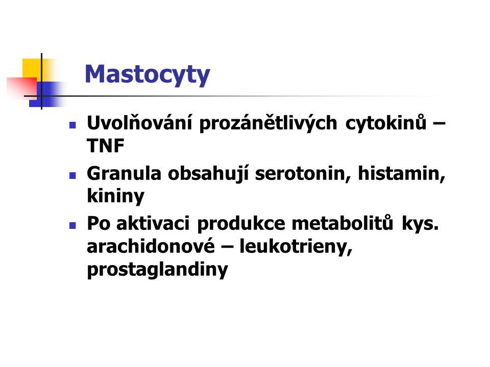 Mastocyty Uvolňování prozánětlivých cytokinů – TNF