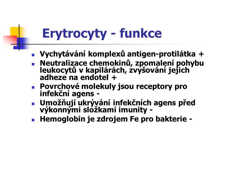 Erytrocyty - funkce Vychytávání komplexů antigen-protilátka +