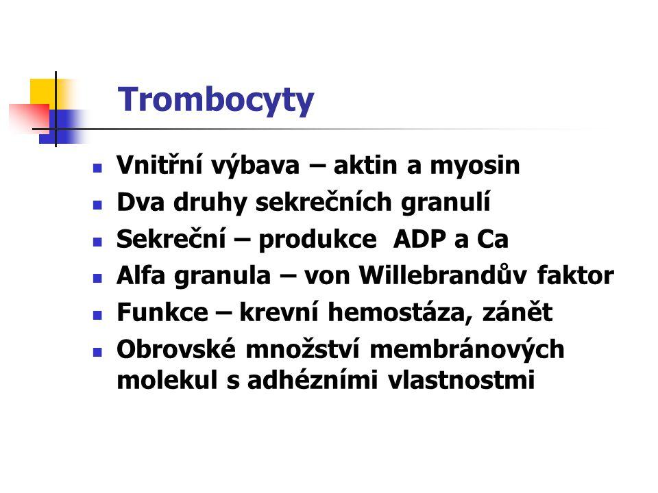 Trombocyty Vnitřní výbava – aktin a myosin