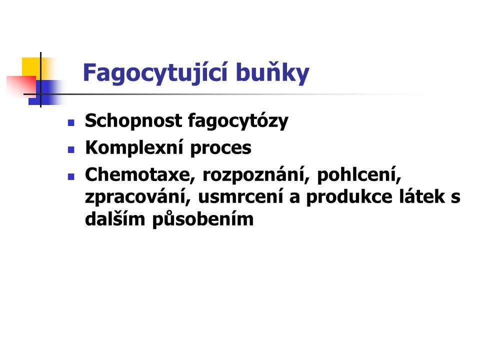 Fagocytující buňky Schopnost fagocytózy Komplexní proces