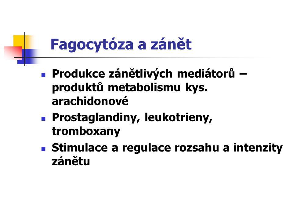 Fagocytóza a zánět Produkce zánětlivých mediátorů – produktů metabolismu kys. arachidonové. Prostaglandiny, leukotrieny, tromboxany.