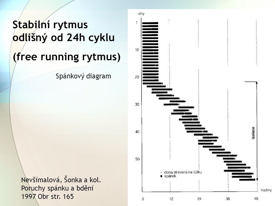 Stabilní rytmus odlišný od 24h cyklu (free running rytmus)