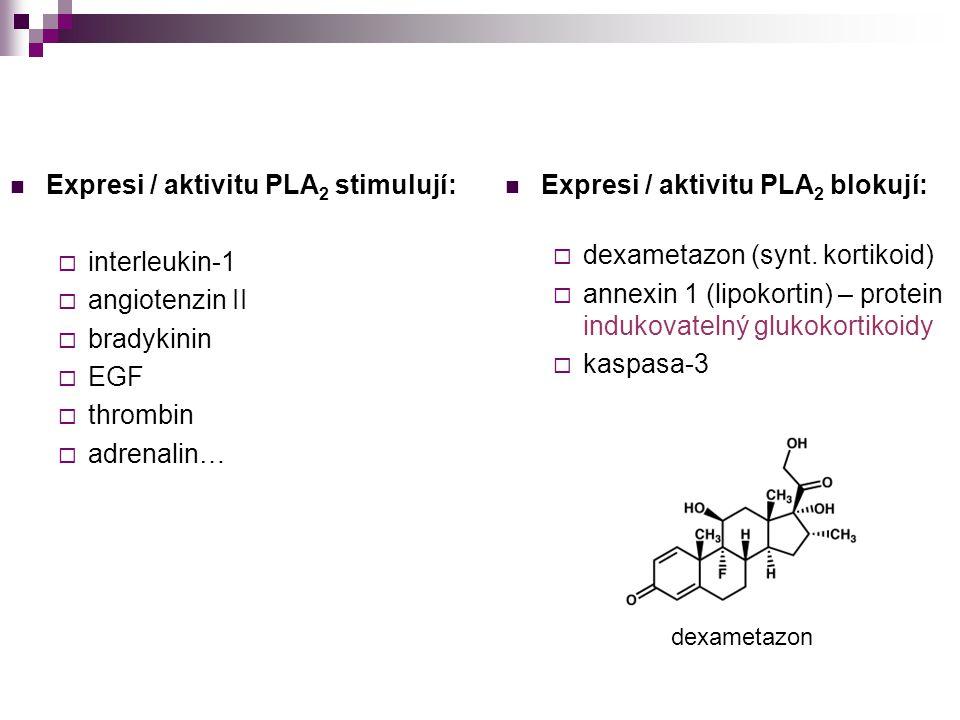 Expresi / aktivitu PLA2 stimulují: interleukin-1 angiotenzin II
