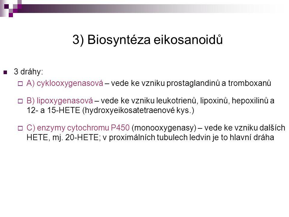 3) Biosyntéza eikosanoidů