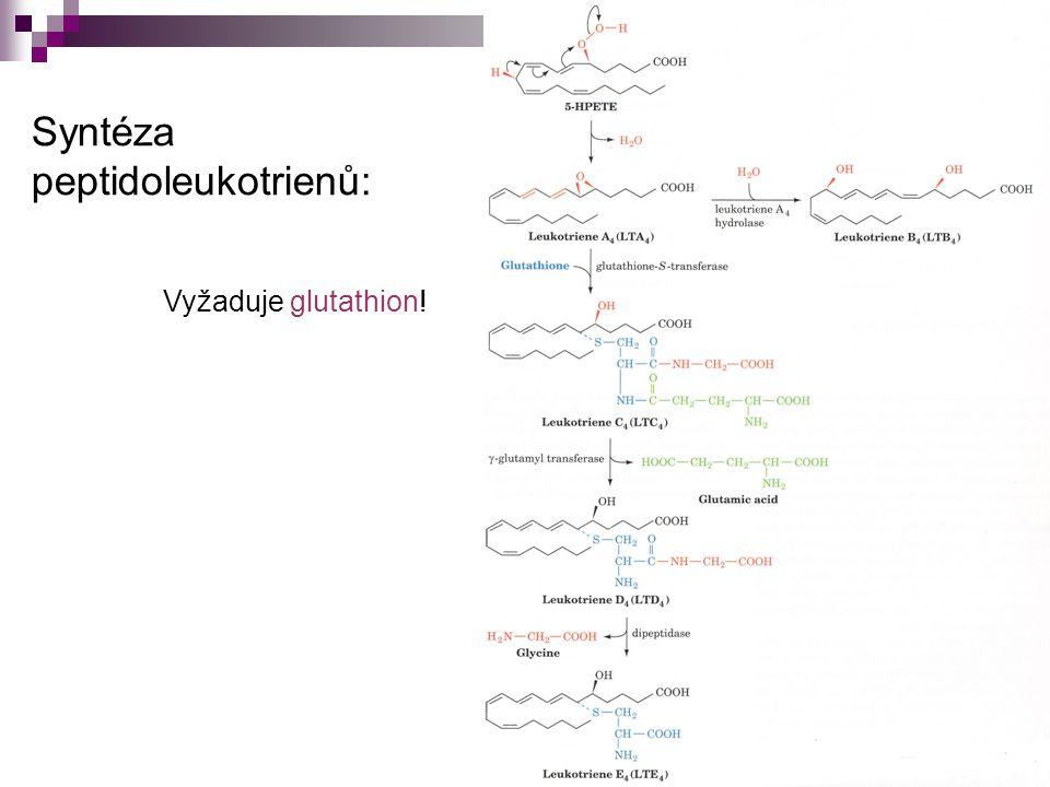 Syntéza peptidoleukotrienů: