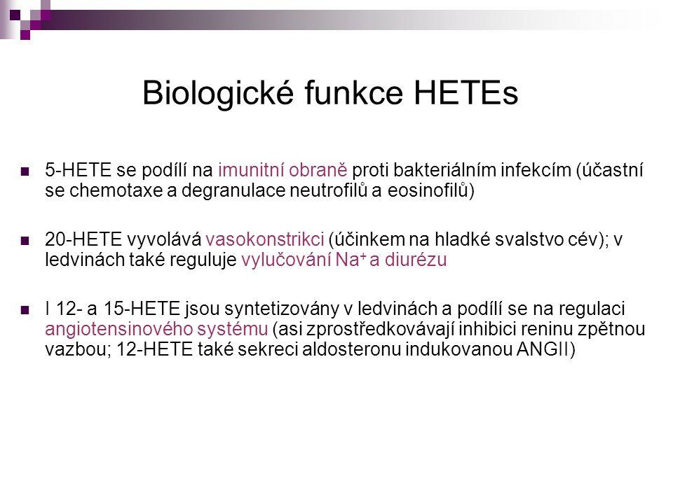 Biologické funkce HETEs