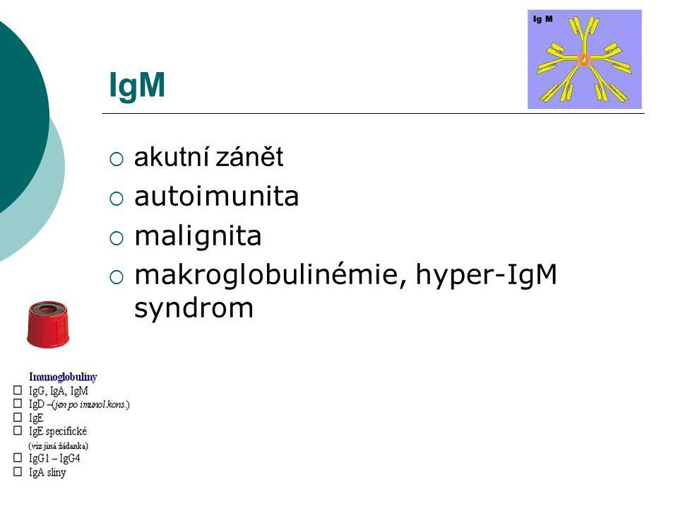 IgM akutní zánět autoimunita malignita