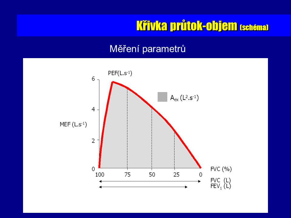 Křivka průtok-objem (schéma)