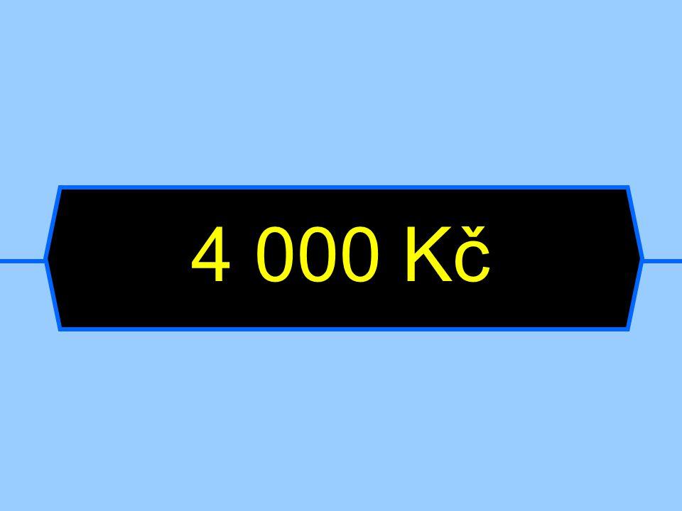 4 000 Kč