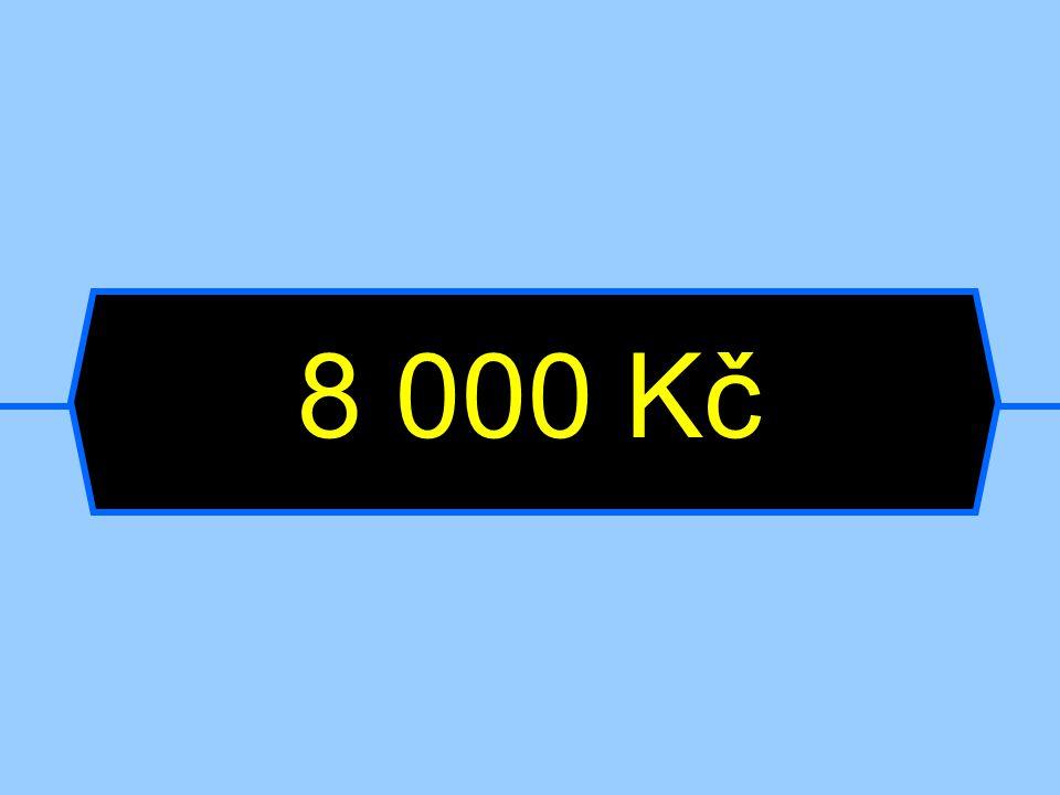 8 000 Kč