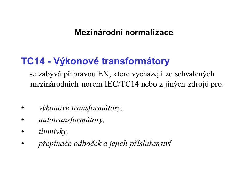 Mezinárodní normalizace
