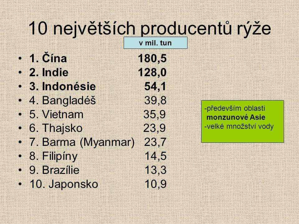 10 největších producentů rýže
