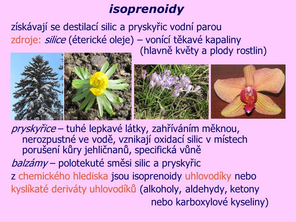 isoprenoidy získávají se destilací silic a pryskyřic vodní parou