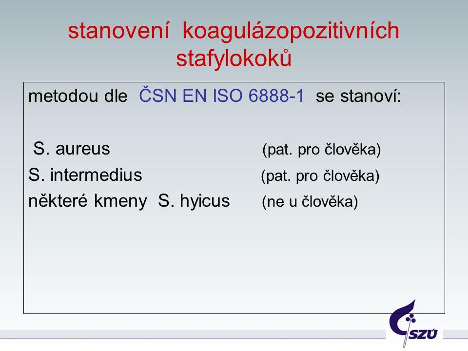stanovení koagulázopozitivních stafylokoků