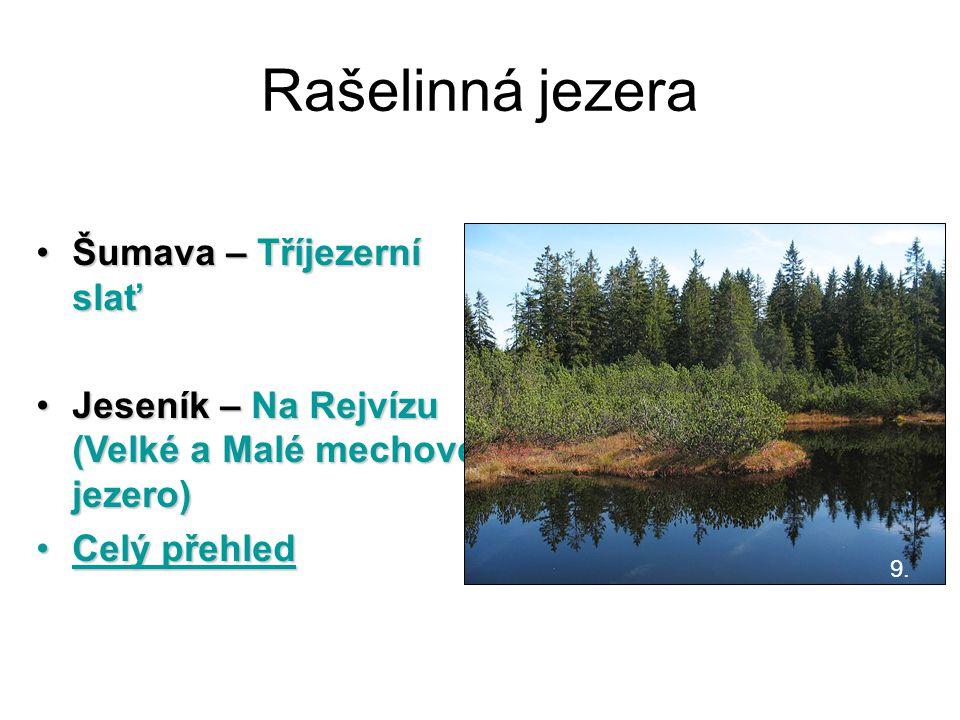 Rašelinná jezera Šumava – Tříjezerní slať