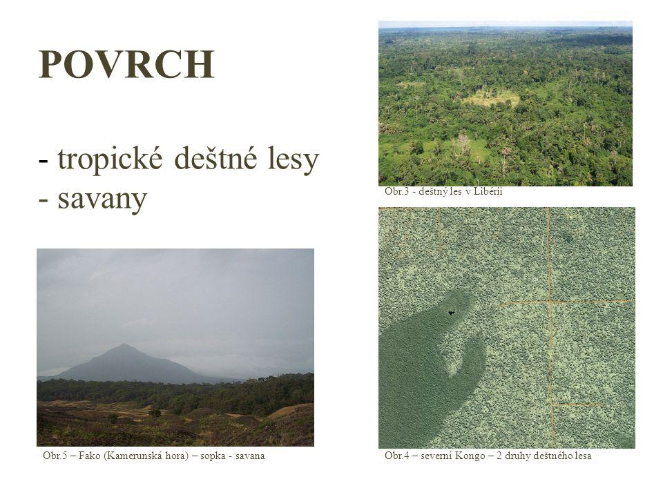 POVRCH - tropické deštné lesy - savany