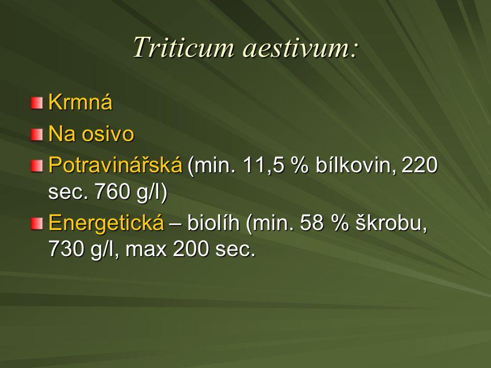 Triticum aestivum: Krmná Na osivo