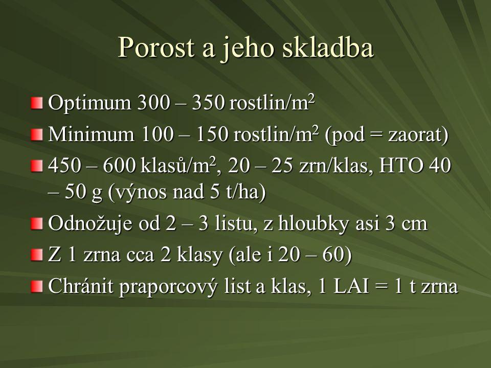 Porost a jeho skladba Optimum 300 – 350 rostlin/m2