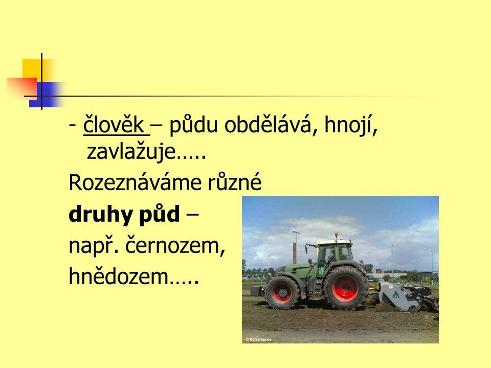 - člověk – půdu obdělává, hnojí, zavlažuje…..