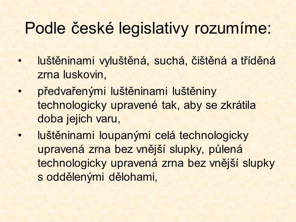 Podle české legislativy rozumíme: