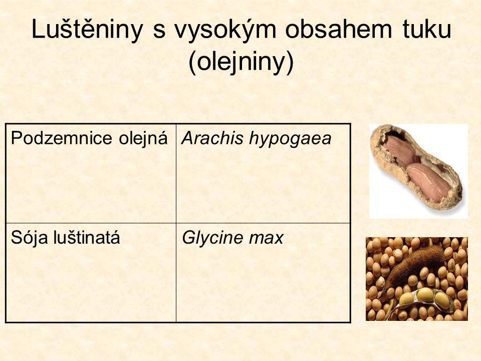 Luštěniny s vysokým obsahem tuku (olejniny)