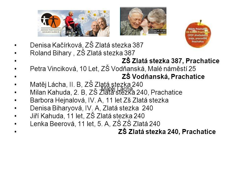 Denisa Kačírková, ZŠ Zlatá stezka 387