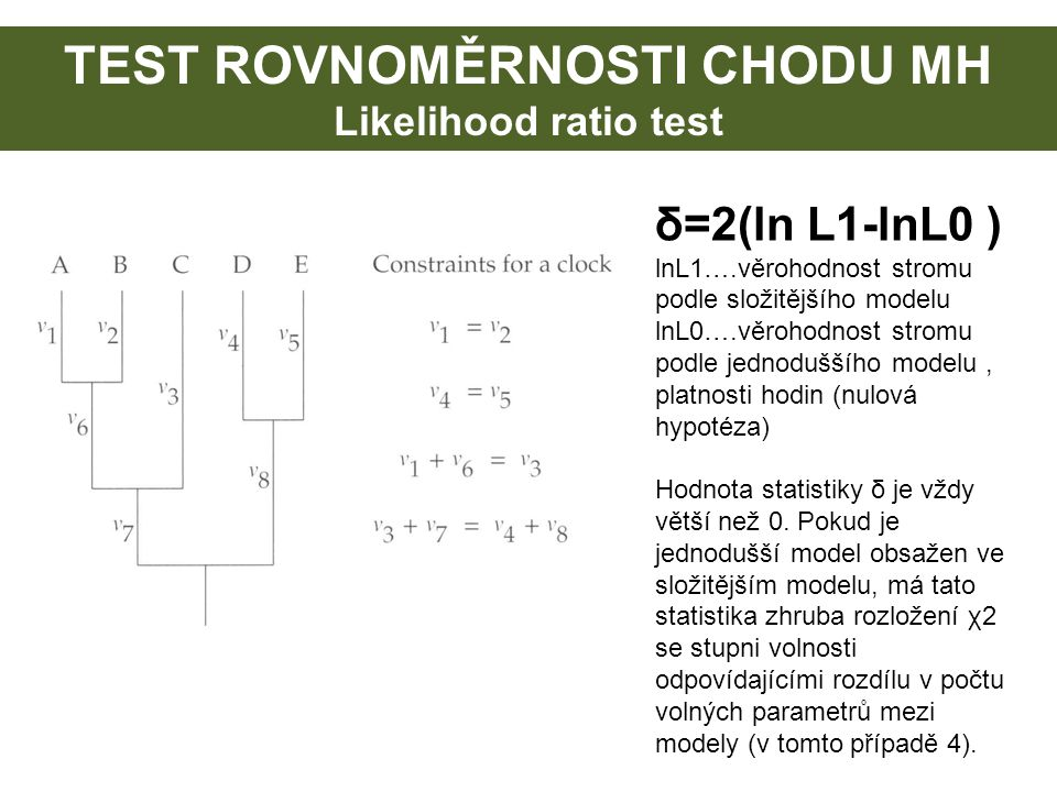 TEST ROVNOMĚRNOSTI CHODU MH Likelihood ratio test